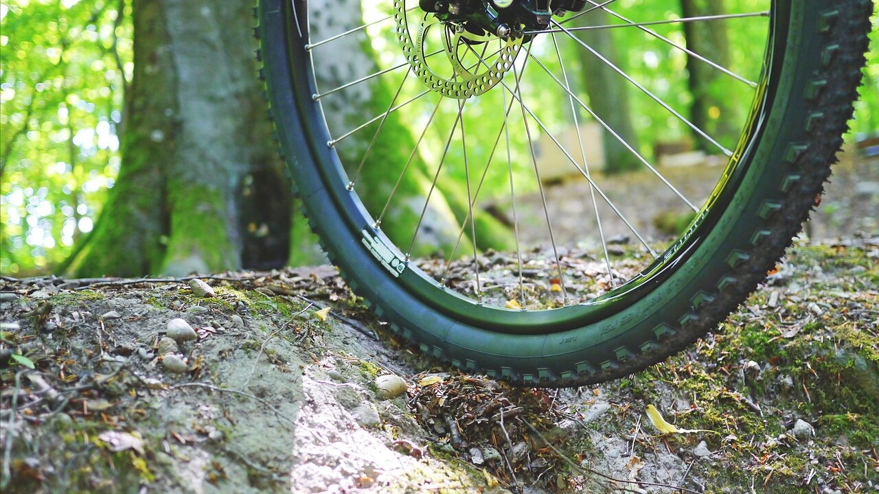 Event MTB - Tour to the alm pastures