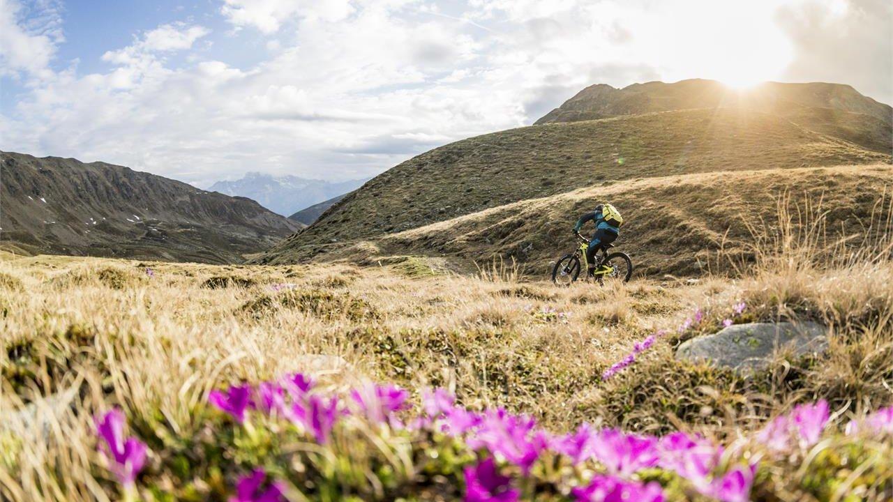 Event MTB E-Bike-Tour Sextner mountain pastures