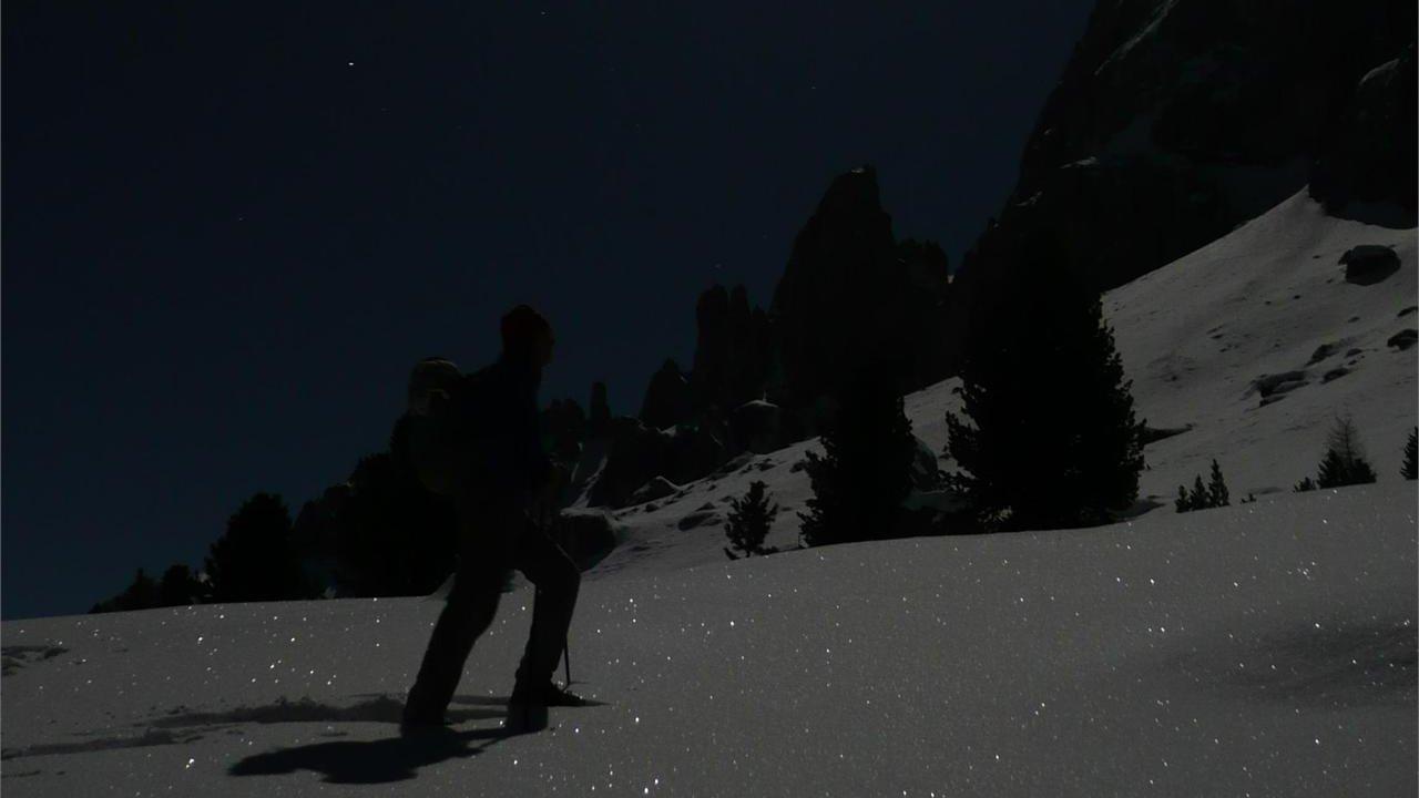 Event Abendliche Schneeschuh-Wanderung