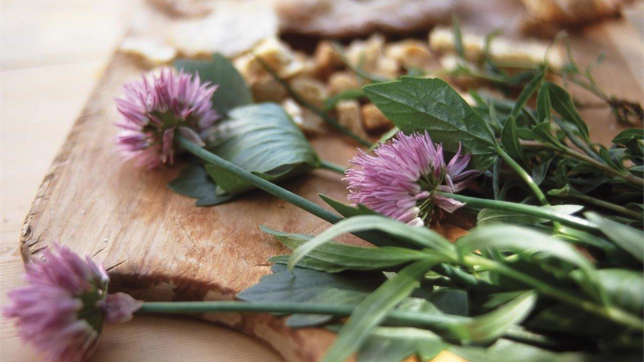 Event Südtirol Balance: Pick, cook, taste