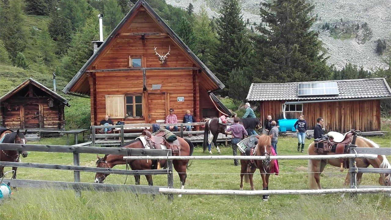 Event Reiten auf dem Bacherhof