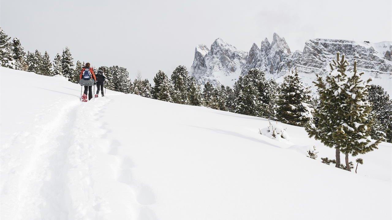 Event Snowshoeing at Resciesa high plateau