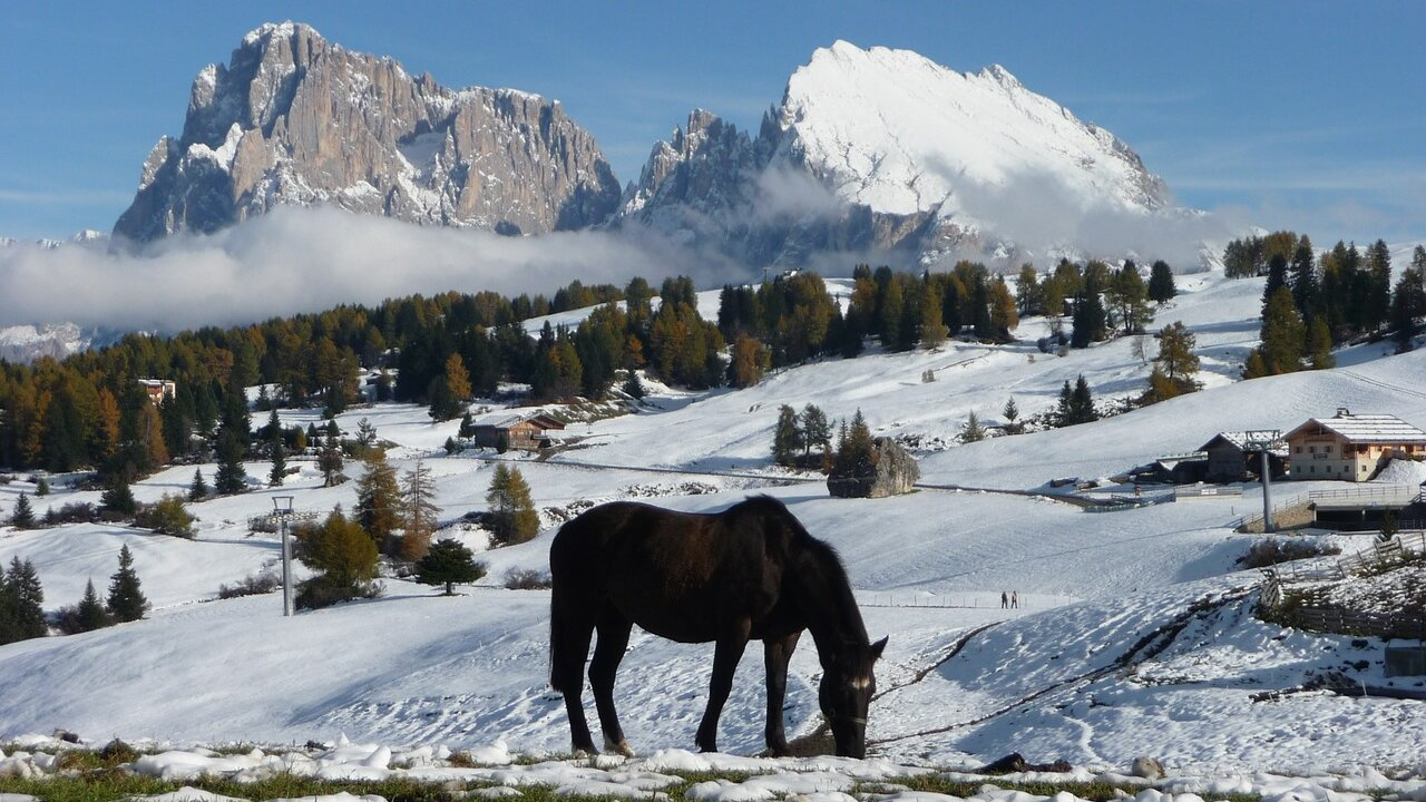 "Event Wanderung: ""Dolomiten Unesco """