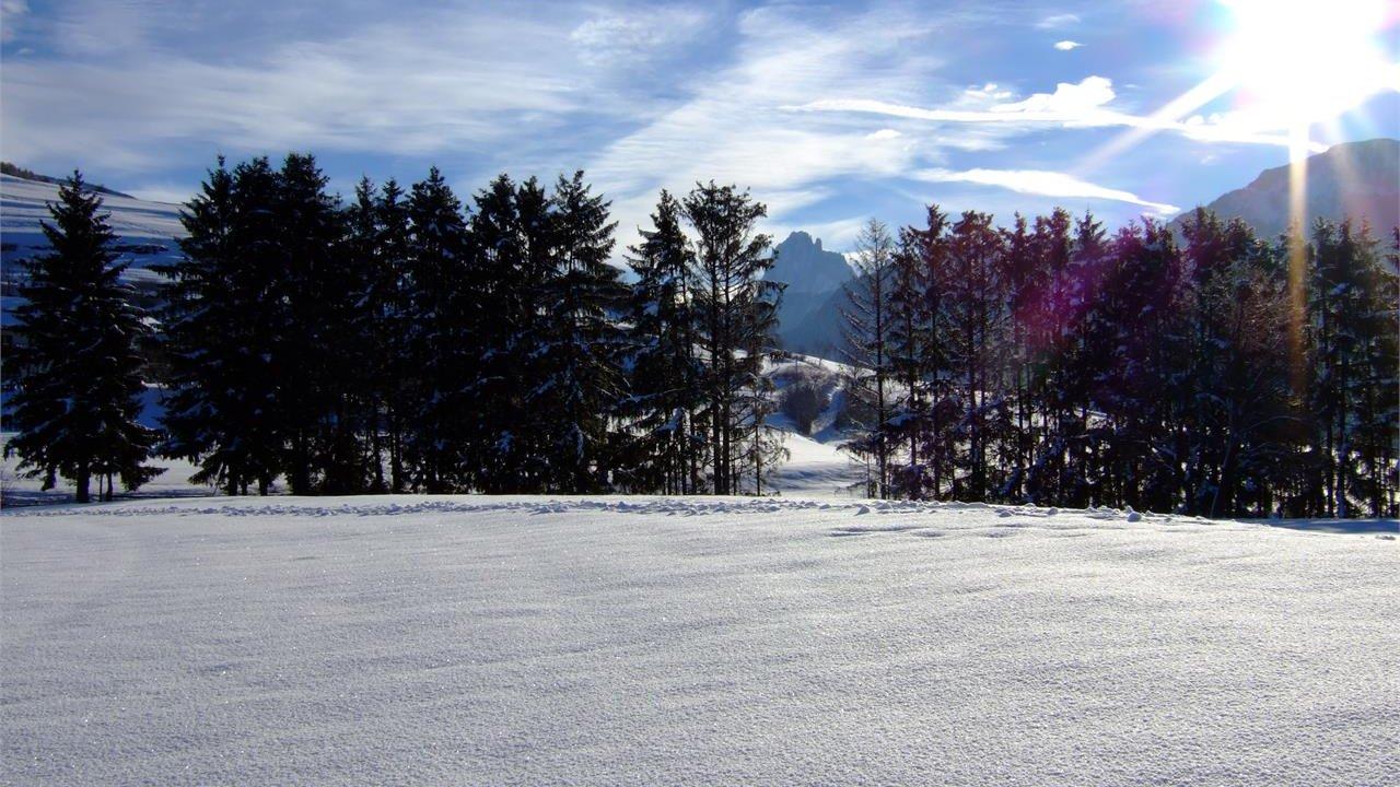 Event Geführte Winterwanderung
