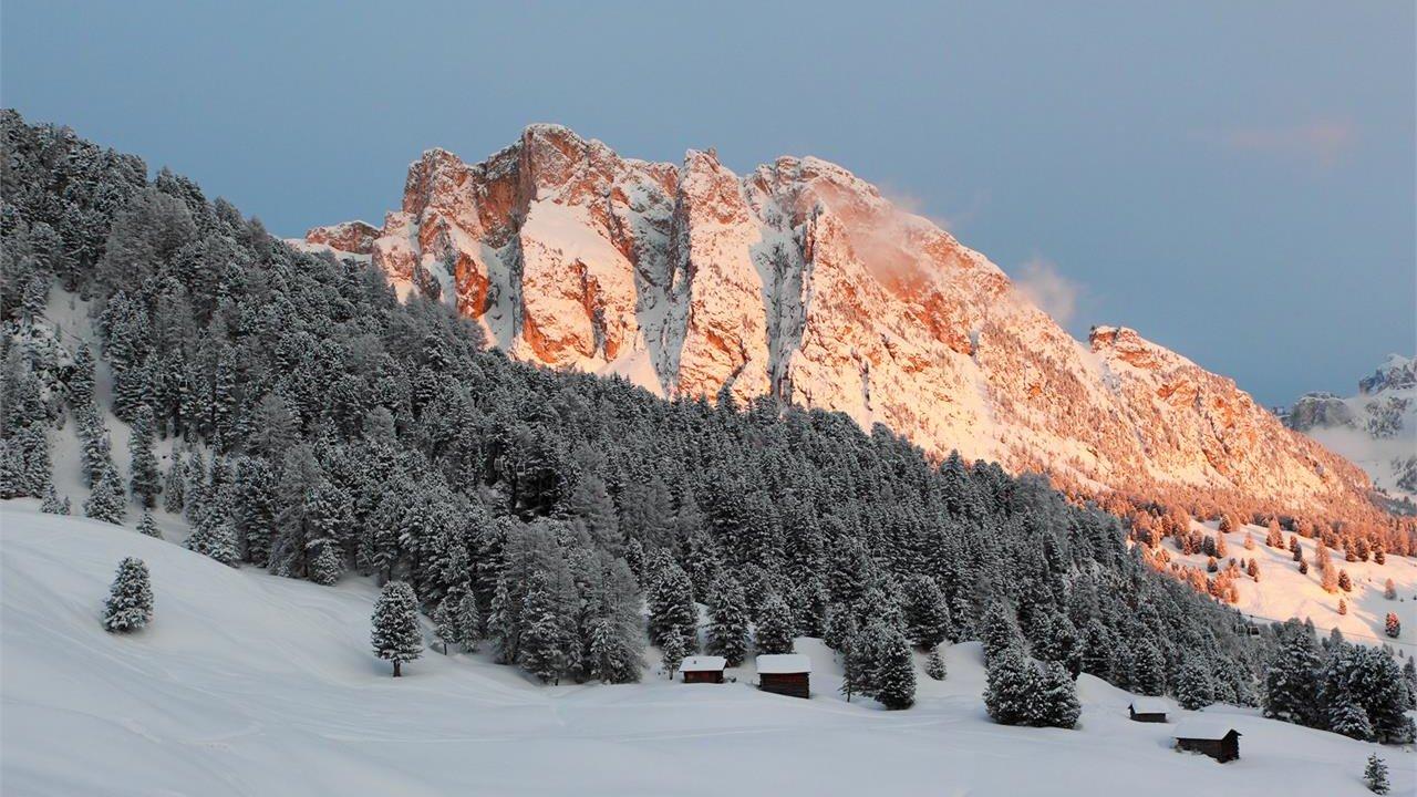 Event Half-day snowshoe walk to Juac