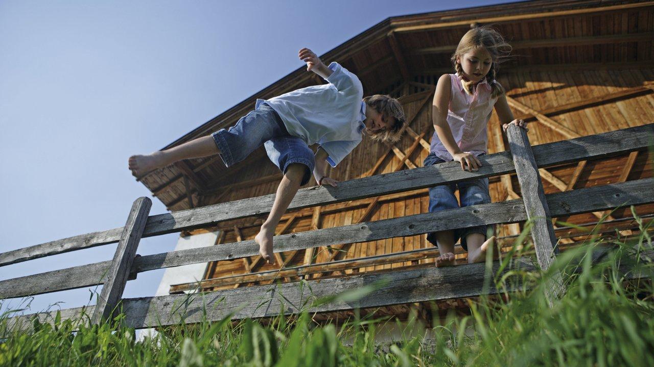 Event Escursione per famiglie: Monte Pana