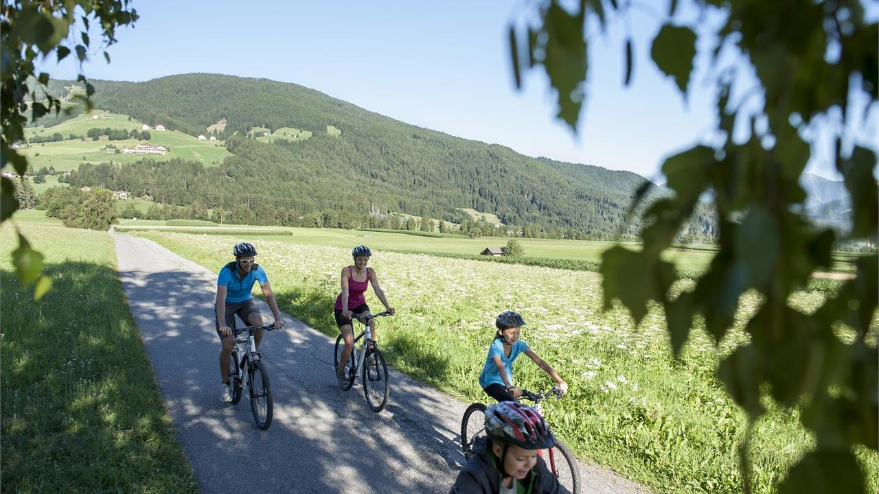 Event Guided family bike tour