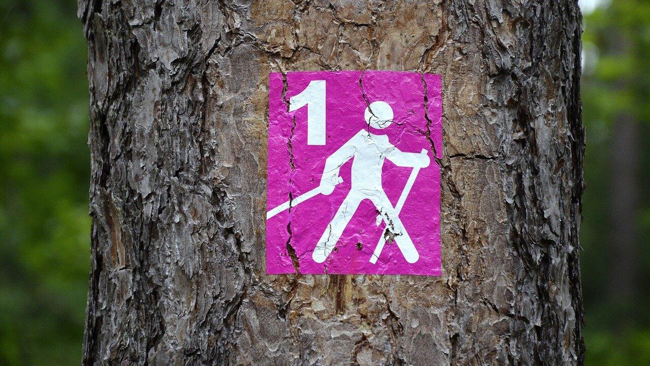 Event Nordic Walking Schnupperkurs