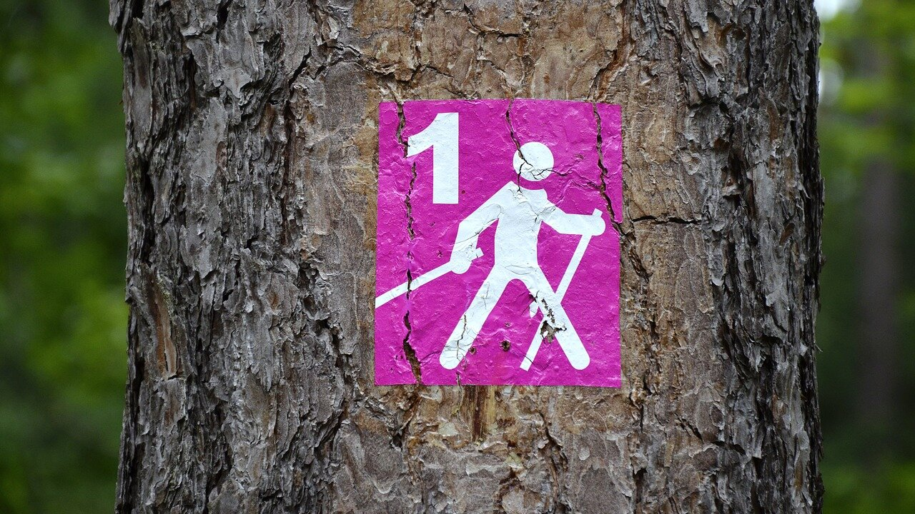 Event Nordic Walking