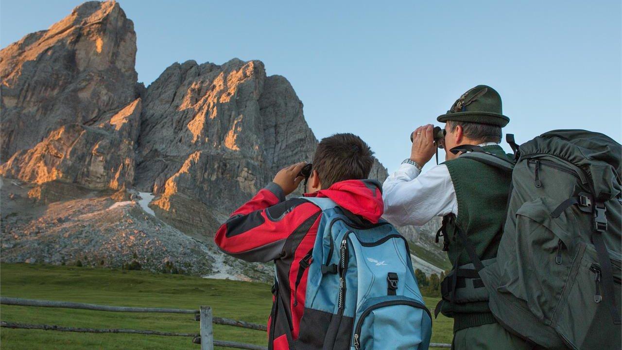 Event Guided hike - animal kingdom