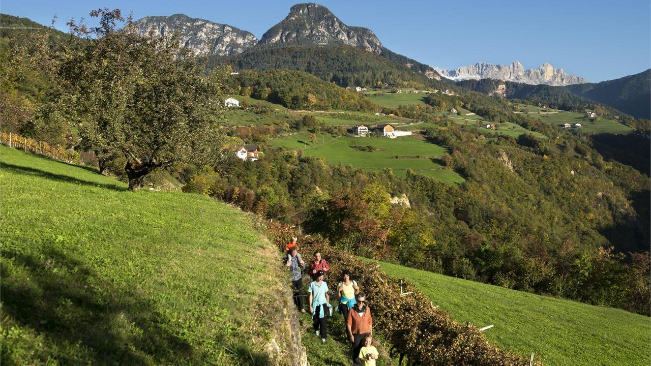 Event Hiking in autumn with