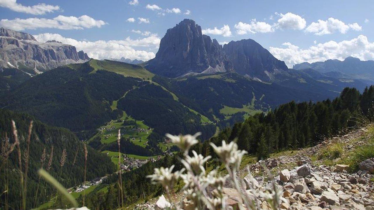 Event Wanderung auf den Panoramaberg Pic