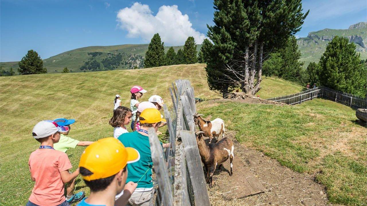 Event Kids Active - Curiosità geologiche