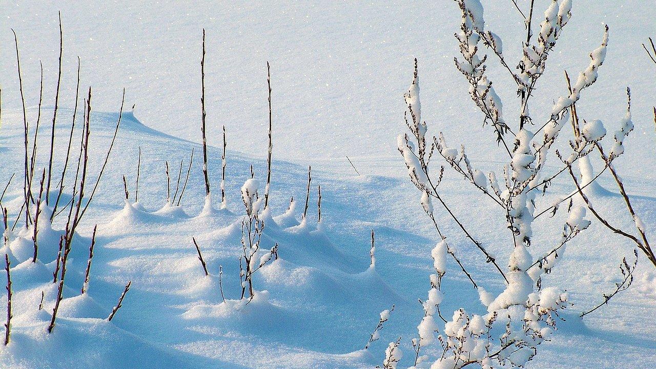 Event Schneeschuhwanderung mit Gilbert