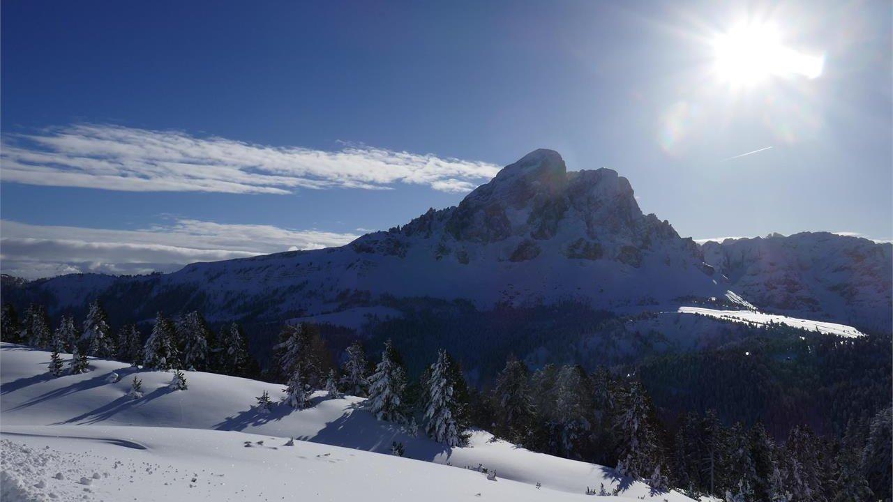 Event Easy snowshoe hike - Putia