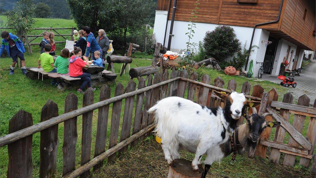 Event Südtirol Balance - Besuch am Bauernhof