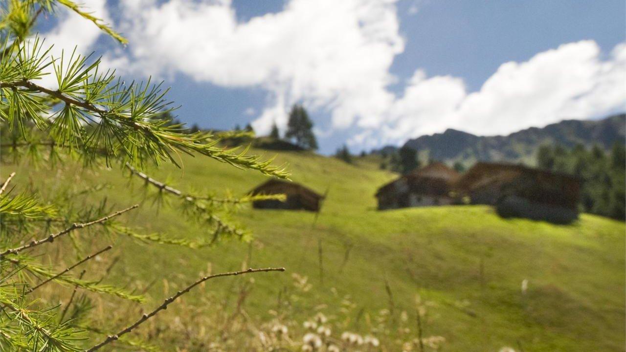 Event Hiking: Panoramic hiking tour