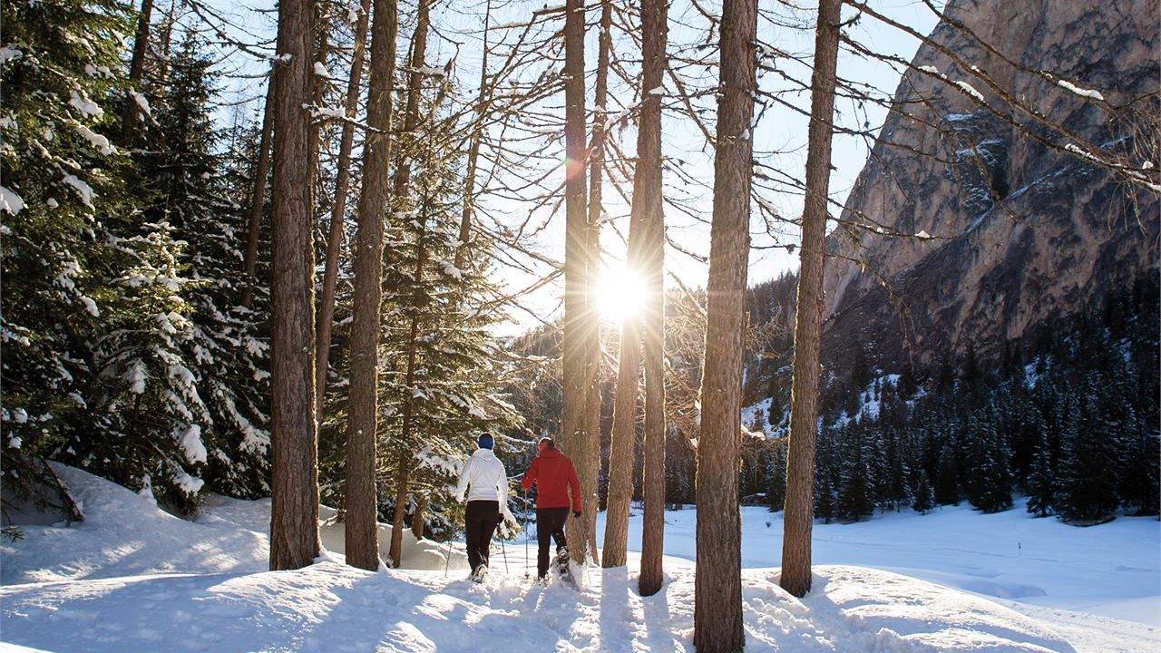 Event Snowshoeing in Vallunga
