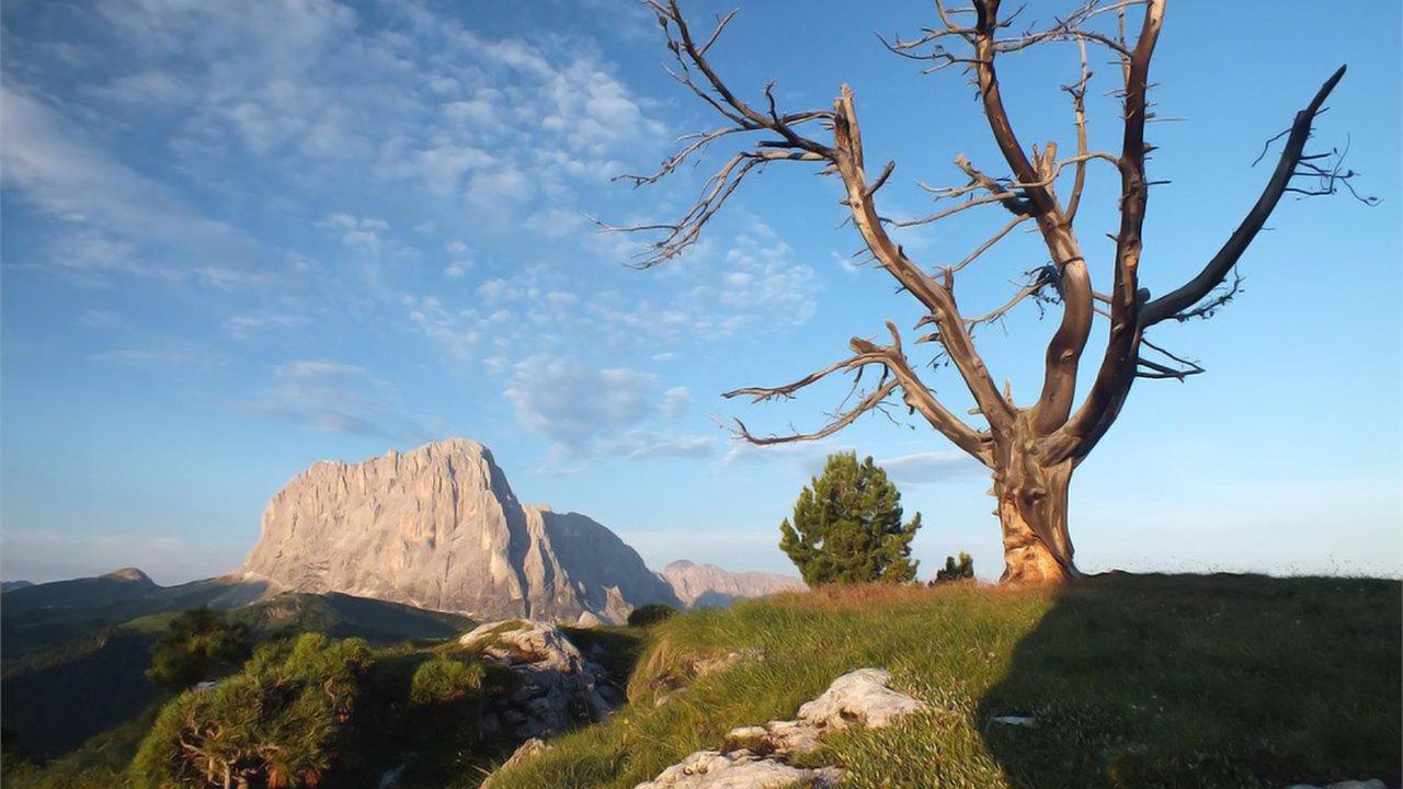 Event Sonnenaufgangswanderung: Stevia Berg