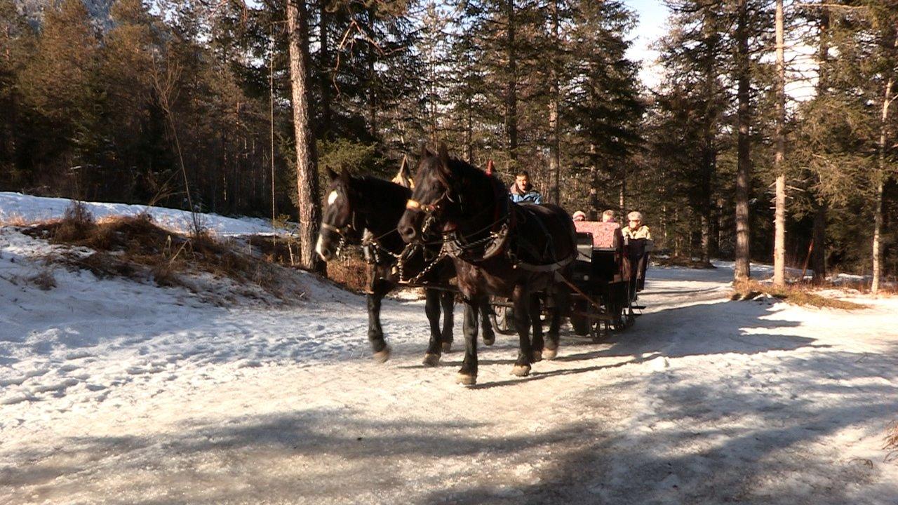 Event Pferdeschlittenfahrt im Fischleintal