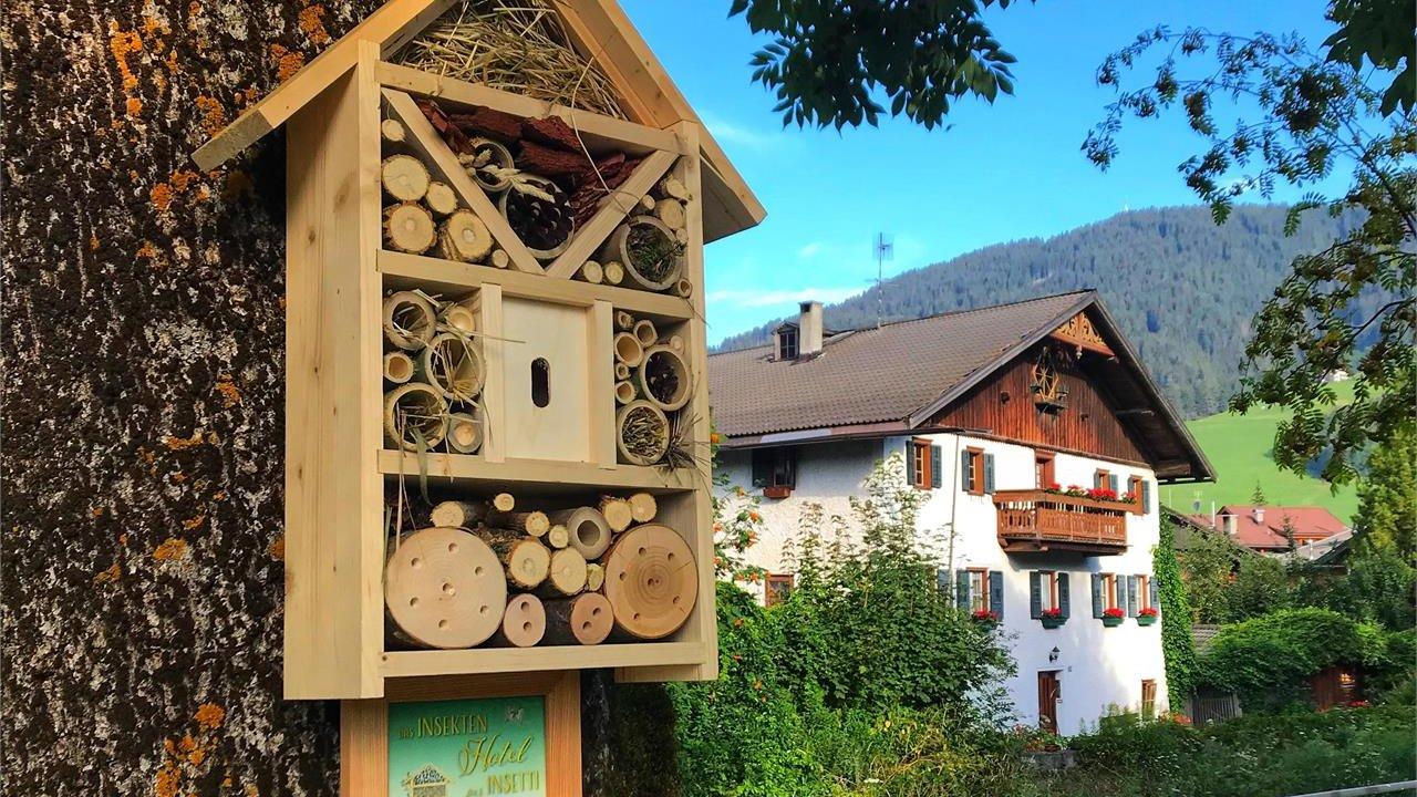 Event Costruiamo un'albergo per insetti